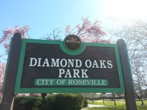 DiamondOaksPark