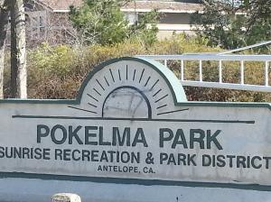 pokelma park